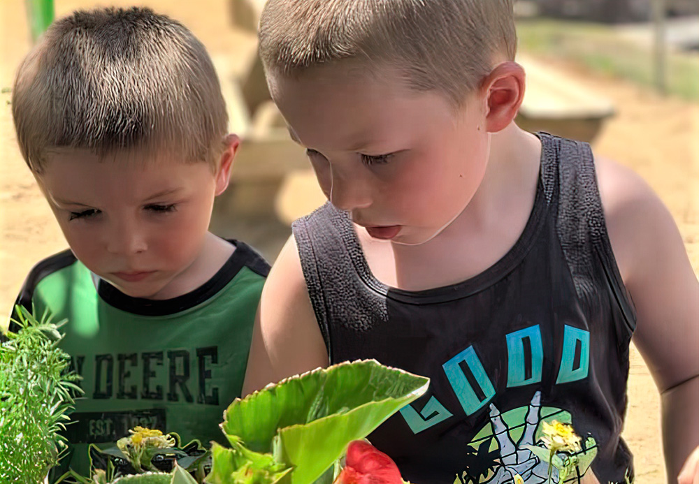 Early Sprouts and A Food Program Encourage Healthy Eating